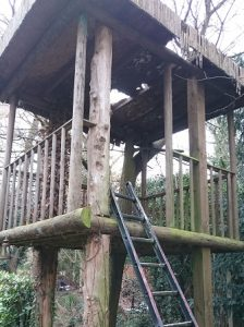 tree house renovation